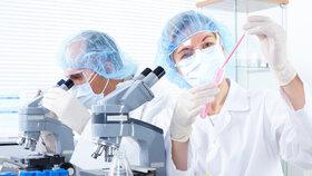 Vědci chtějí dát státu kmenové buňky na léčbu koronaviru: Účinnou látku nabízí zdarma