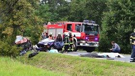 Nejtragičtější víkend na silnicích: Tři mrtví při nehodě u Jesenice, 14 mrtvých celkem!