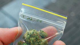 Otrava sedmičlenné rodiny na Ostravsku: Babička okořenila kachnu marihuanou!