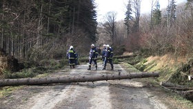 Orkán v Beskydech a Jeseníkách! Před silným větrem varují na i východě Čech