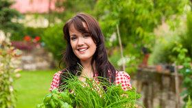 Jak mít bylinky na celý rok? Usušit, naložit nebo nasolit!