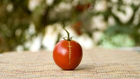 Pozor, ať vám nepopraskají rajčata