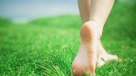 4 tipy pro dokonalý trávník. I on potřebuje po zimě péči