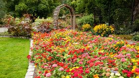 Srpen na zahradě: Co nesmíte zapomenout udělat