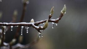 V noci mrzlo, až praštělo. Teploty by mohly klesnout pod nulu i o víkendu