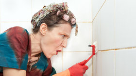 7 kroků, jak mít na svátky koupelnu bez plísní a bakterií