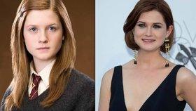 Podívejte se, jak herci z Harryho Pottera vyrostli do krásy