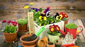 Březen na zahradě: Co všechno nesmíte zapomenout