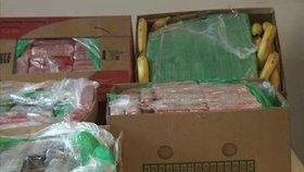 Další kokain v banánech: V Rumunsku objevili 75 kilogramů drogy v bednách s ovocem