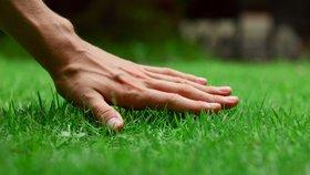 5 největších chyb při zakládání nového trávníku