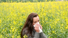Senná rýma: 10 rad, jak se chránit