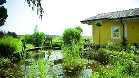 Vybudujte si vlastní oázu klidu – jednoduchý návod pro založení zahradního jezírka
