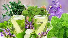 Bylinky v kuchyni: Voní, chutnají a léčí!