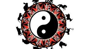 Horoskop na další týden: Hady pohltí stres, Psi zažijí lásku ve všech podobách