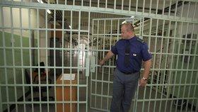 Uprchlého vězně z Mladoboleslavska chytili: Utíkal ve vězeňském mundúru