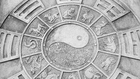 Horoskop na další týden: Krysy budou mít nápady, Opice nevydýchají emoce