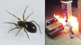 Muž vytáhl zapalovač na pavouka, omylem zapálil benzinku