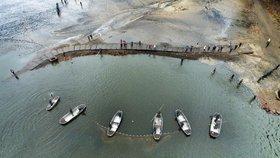 Dron natočil výlov vánočních ryb: Sucho jim pomohlo, měly víc potravy