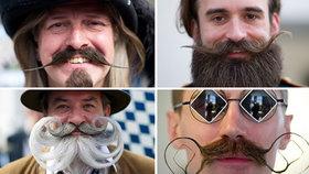 Vousy, kam se podíváš aneb Ženám vstup zakázán: Muži z celého světa soutěžili o nejlepší porost na tváři