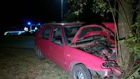 Opilý otec zabil v autě ženu a šestileté dítě. Najel s nimi do stromu. Další řidič zemřel stejně