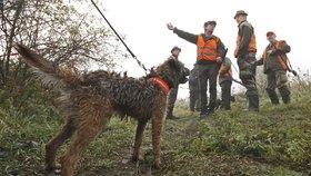 Zákon může Čechy odříznout od volné přírody. Zavřou hony i louky a sady?
