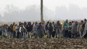 Bití, střelba a rozzuření psi. Bulharská policie prý udeřila na migranty