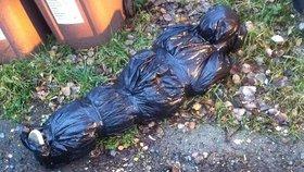 Pomoc, našla jsem mrtvolu! Ženu z Litvínova vyděsil nejapný žert