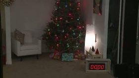 Šťastné a hořlavé! Jiskra udělala z vánočního stromku inferno v obýváku během 20 sekund