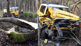Při nehodě na Rakovnicku truckem vyvrátil a zlomil strom, auto je napadrť