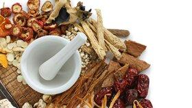 O imunitě, o léčivých houbách, a vůbec…