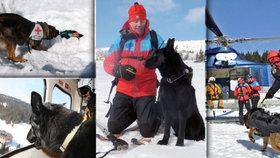 Život na českých horách zachraňuje 13 psů. Víme, proč mezi nimi chybí bernardýn