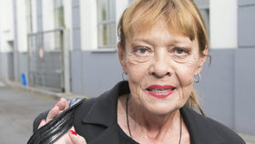 Herečka Jana Šulcová: Děsivý pád ze schodů! Chodila pozpátku