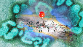 Vyhněte se Kostarice, radí ministerstvo. Řádí tam prasečí chřipka