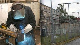 Vězni mají dostat přidáno. 3D modelář si vydělá i devět tisíc, jiní polovinu