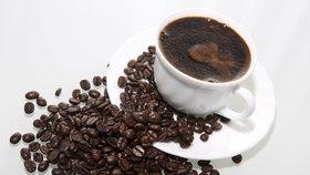 Jedna pražská kavárna vyprodukuje dvě tuny lógru ročně, ukázala analýza. Provozovny špatně třídí odpad