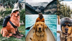 Čtyřnohý cestovatel dobyl internet: Aspen věrně doprovází svého páníčka i do nejdivočejší přírody