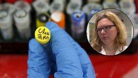 Pozitivní test na virus zika nic neznamená. Stačí mít klíšťovou encefalitidu