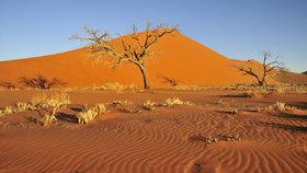 Etiopii sužuje extrémní sucho. Přes osm milionů obyvatel nemá co jíst