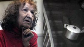 Babička rozparovačka odmítá přiznat, kolik lidí zabila! Zavřeli ji do blázince