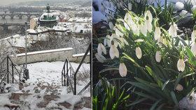 Mrazy se odporoučely: Příští týden bude až 18 stupňů, pod nulu už teploty nespadnou