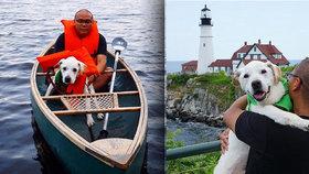 Umírajícího pejska vzali na poslední velkou cestu: Labrador procestoval celou zemi a odešel navždy