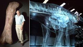 Britský dobrodruh David Attenborough a největší dinosaurus všech dob: Oživili titána!