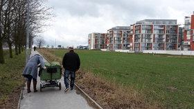 Víc zeleně pro Zličín a Sobín. Revitalizace má pomoci i v případě lokálních povodní
