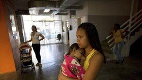 Nejdřív zika, teď žlutá zimnice: Komáři šíří další nebezpečnou nákazu