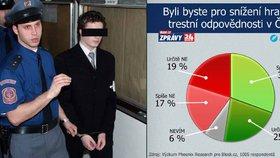 Ať jsou děti trestně odpovědné už od 13 let, žádají podle průzkumu Češi