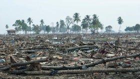 Indonésii zasáhlo masivní zemětřesení, jeho síla dosáhla 7,9 stupně