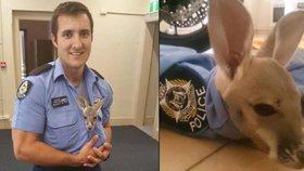 Policista adoptoval klokaního sirotka. Do práce ho nosí v košili
