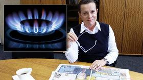 Připravíme zákon, který domácnostem zlevní plyn, slíbila Vitásková