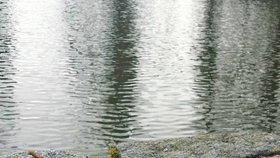 """Vodohospodáři našli """"poklad"""". Ztracenou bronzovou tabulku objevili při čištění koryta řeky"""