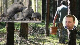 Houbaře a výletníky čeká v lese pokuta až 30 tisíc. Jurečka ji chce kvůli honu